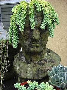 Reasons Succulents Are The Best Plants Ever