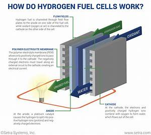 What Is A Hydrogen Fuel Cell And How Does It Work