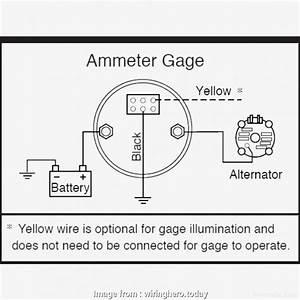 12 Volt Wire Gauge Chart Best Ac Ammeter Wiring Diagram