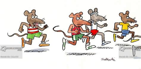 Free Mouse Race Cliparts, Download Free Clip Art, Free