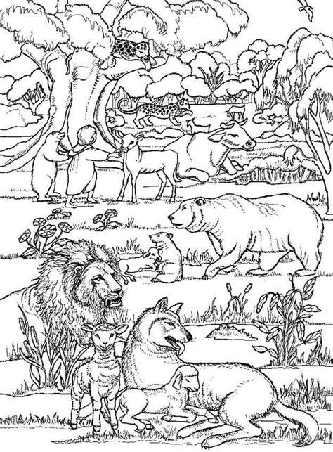 Kleurplaten Oude Testament by De Schepping Oude Testament Kleurplaten Bijbel