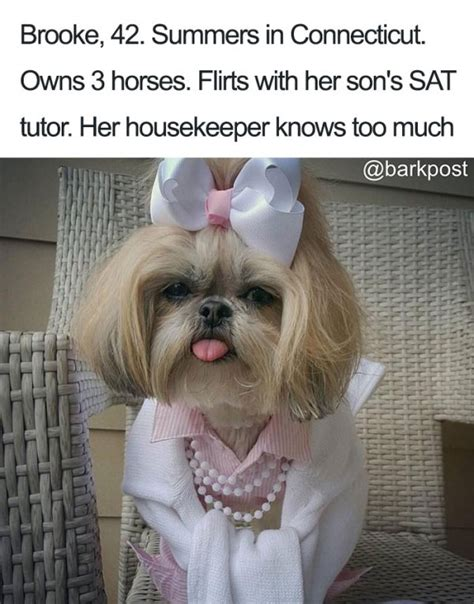 animal bios  hilariously human     relate