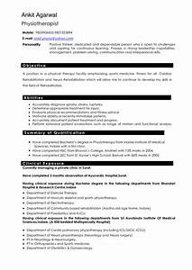 resume professional writers project scope template With resume professional writers ripoff