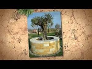 Winterschutz Für Kübelpflanzen : winterschutz frostschutz f r k belpflanzen olivenbaum palmen und youtube ~ Avissmed.com Haus und Dekorationen