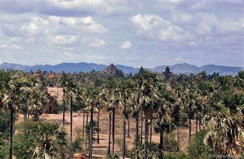 Burma 19: Bagan: Die Tempel