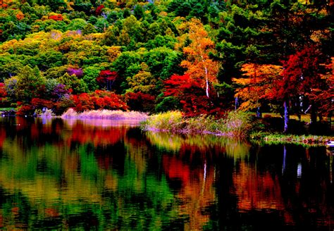 Fall Backgrounds For Desktop Computers by 76 Fall Colors Desktop Wallpaper On Wallpapersafari