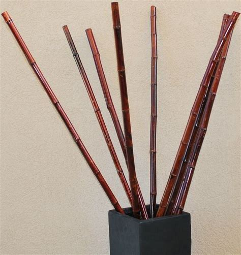 Vases For Bamboo Sticks - 53 best images about decorative branches on