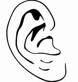Ear Coloring Template sketch template