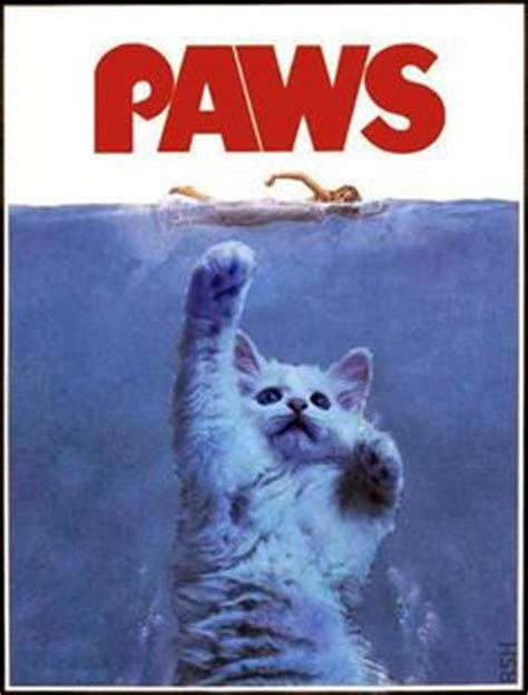worlds funniest cat cartoons funny pictures