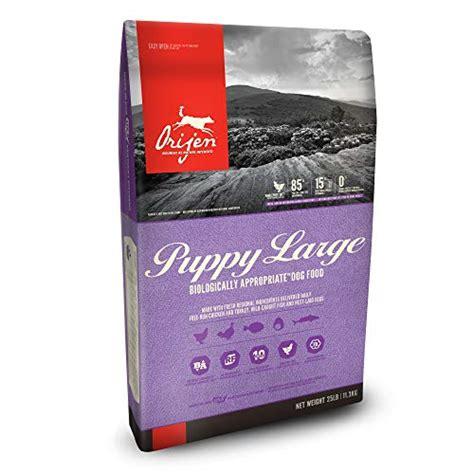 dog food  lab puppies    buy