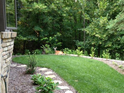 backyard retreats ideas backyard retreats quotes