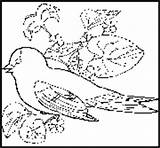 State Goldfinch Coloringbook Bird Coloring Nj Eastern Hangout sketch template