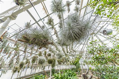 Botanischer Garten Eberswalde by Botanischer Garten Heidelberg Botanischer Garten