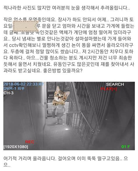 (극혐)인천 남구 ㅇㅇ동 똥싸 - IBPAIBPA