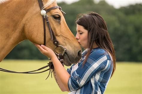 horse horses humans bond equine animals human being therapy ver person lifestyle between things reincarnate caballo el equestrian different truths