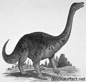 Riojasaurus dinosaur