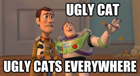 Ugly Cat Meme - ugly cat ugly cats everywhere toy story everywhere quickmeme