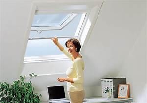 Insektenschutz Für Dachfenster : insektenschutz eser insektenschutz fliegengitter ~ Articles-book.com Haus und Dekorationen