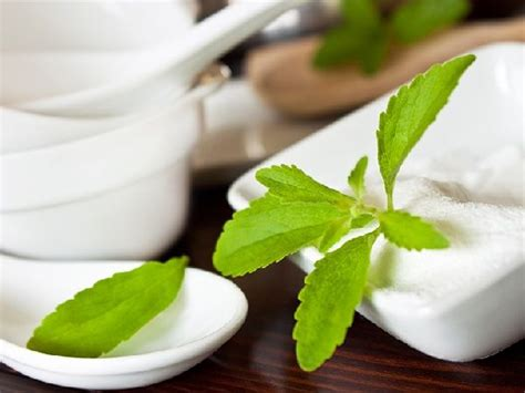 Stevia Market to Reach $1.16 Bn, Globally, by 2026 at 8.0% ...