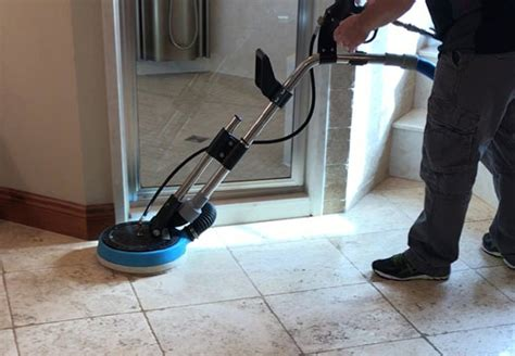 pet odor removal pet stain removal remove pet stains
