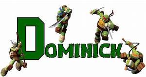 Teenage Mutant Ninja Turtles Birthday Shirt