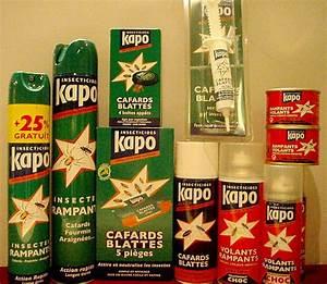 Produit Contre Cafard : contre les insectes rampants droguerie journet alpes couleurs ~ Melissatoandfro.com Idées de Décoration