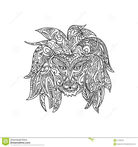Lion Coloring Page Stock Illustration Image 57782262