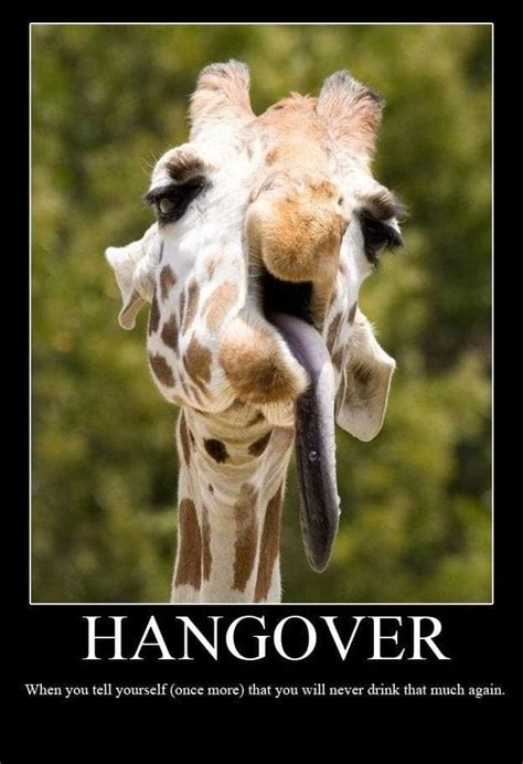 Bad Hangover Funny Memes