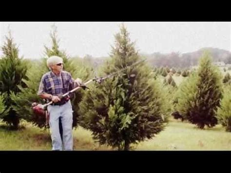 the southern christmas tree at beavers christmas tree farm youtube