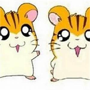 Which two ham-hams are related? - The Hamtaro Trivia Quiz ...