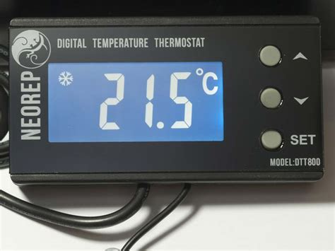 Reptile Heat L Thermostat by Digital Vivarium Reptile Thermostat For Heat Mats And