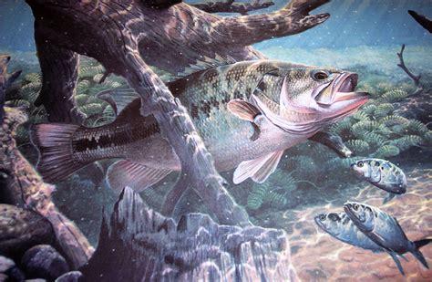 bass fishing hd wallpaper wallpapersafari