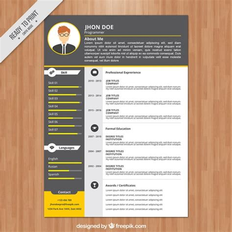 Programmer Curriculum Vitae Template by Programmer Resume Template Vector Free