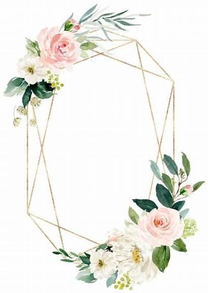 Invitation Gold Geometric Floral Blush Card Invitations