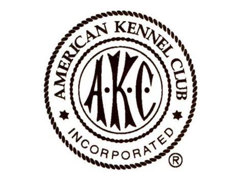 American Kennel Club  Nuforest Dachshunds