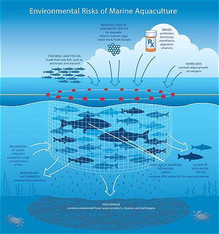 mariculture wikipedia