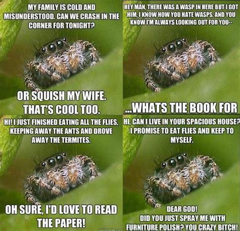 Sad Spider Meme - cute spiders phil ebersole s blog