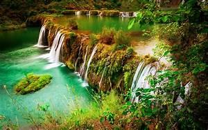 Beautiful, Waterfall, Nature, Autumn, Beautiful, Green, Grass, Trees, Hd, Wallpaper, 2560x1600