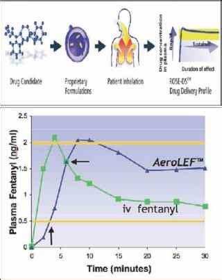 delivery  opioids   lungs  aerosolized liposome