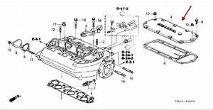 Codes P0453 And P0401 - Honda-tech