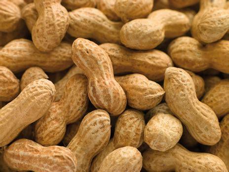 l arachide pour votre sant 233 rebelle sant 233