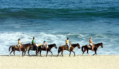riding cabo horseback lucas san horses scenery places ride exotic los mexico while beaches cabos take breathtakingly imagine truly would