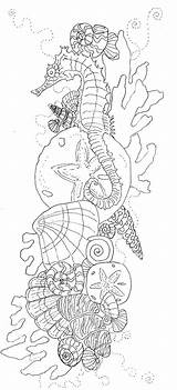 Coloring Pages Ocean Adult Seahorse Line Sheets Printable Advanced Patterns Tattoos Detailed Colouring Drawing Shells Sleeve Anti Zentangle sketch template