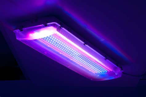 1000 watt led grow lights for sale 1000 watt led grow lights for sale top 15 best led grow