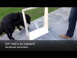 Hundehütten Zum Selberbauen : hundeh tte selber bauen hundeh tte bauanleitung diy h ~ Michelbontemps.com Haus und Dekorationen
