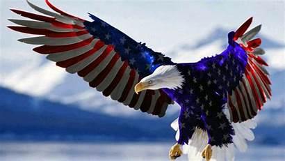 Eagle Flag American Bald Pc Phones Tablet