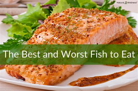 best fish to eat the best and worst fish to eat