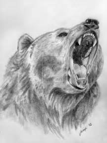 Grizzly Bear Drawings Realistic