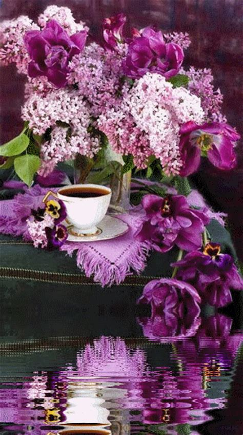 tea lilacs pictures   images  facebook