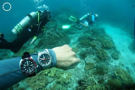 real world test diving   rolex submariner sinn